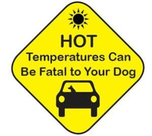 Paw-Pals-Hot-temps-fatalities