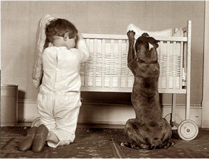 Paw-Pals-Nanny-Dogs