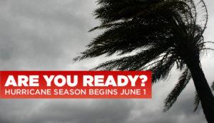 Paw-Pals-National-Hurricane-Preparedness-Week