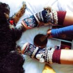 Fall and Winter Pet Health