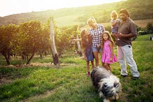 Family with dog at one of the top dog friendly wineries in Northern Virginia
