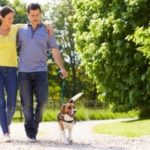 a couple walking their dog on one of the many wonderful dog trails in Northern Virginia recommended by Paw Pals