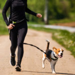 women learning how Walking Your Dog in hot weather
