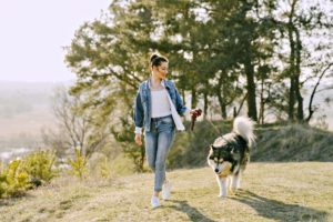 professional dog walking service is ideal for busy owners
