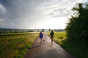 couple walking dog on road in the morning while on vacation