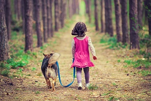 girl dog walking services in northern virginia her dog on a leash