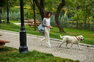 Fairfax Oaks VA Dog Walking service walking a lab outside