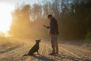 A man commands his dog to sit working on why dog won't come inside when called