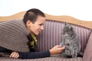 young woman and gray domestic cat at bed-sitter